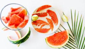 Fool Proof Healthy Dehydrator Snacks for Kids