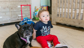 How to Introduce Your Dog to Your Baby